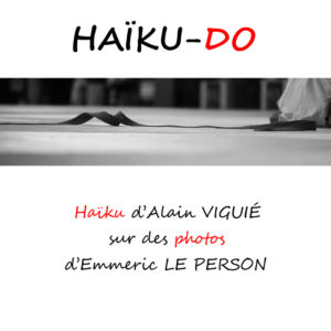 haiku-couverture