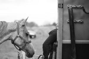 Equitation 02