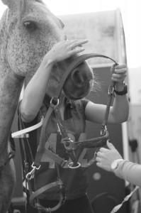 Equitation 01